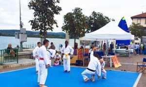 Arona sport judo