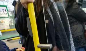 bus passeggeri