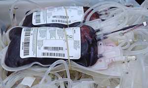 donazione sangue 2